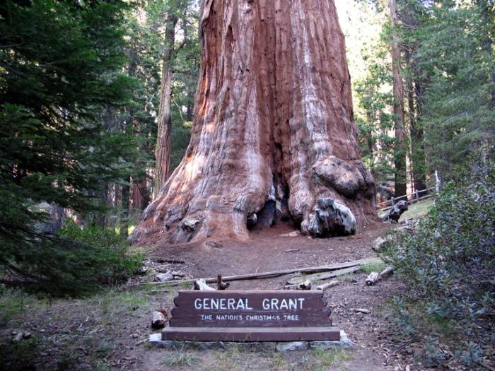 general-grant-lower-big